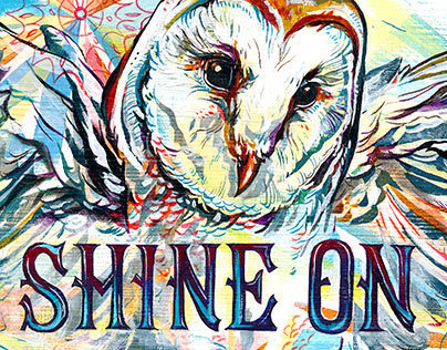 Shine On Owl / Wallpaper Download
