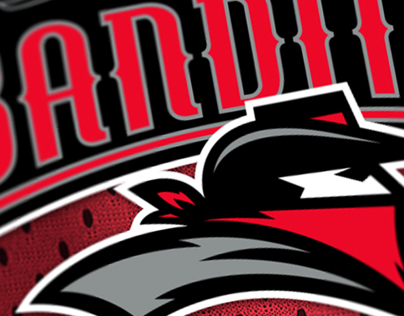 A11FL Unused Concept - Tampa Bay Bandits