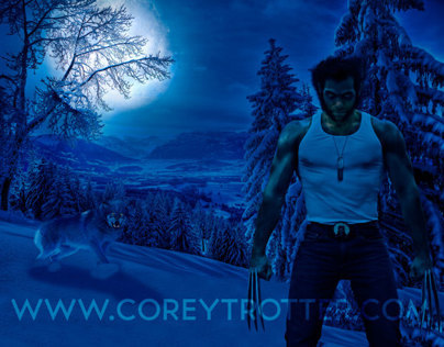 Wolverine Winter