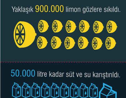 occupygezi infographic