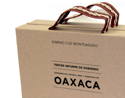Government Report´s Packaging