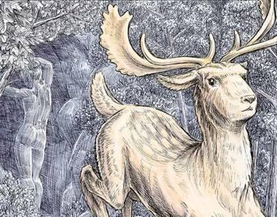 Ovids Metamorphoses Illustrations