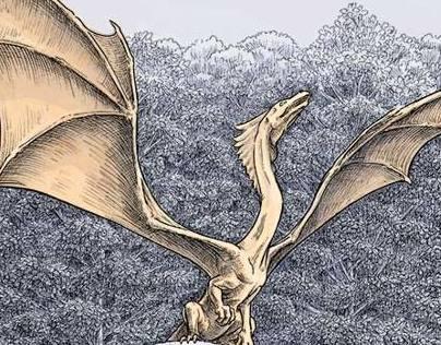 Fantasy Dragon Illustrations