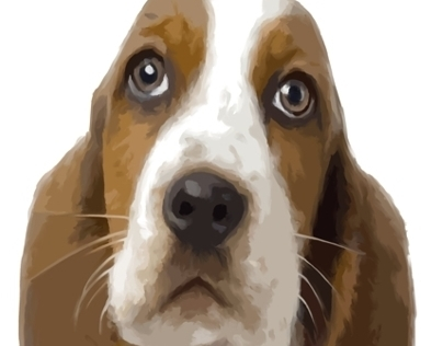Basset Hound Puppy Oh my Dog Project