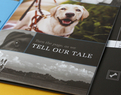Southeastern Guide Dogs   Behind the Story