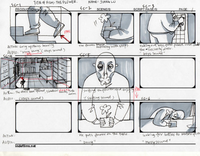 """The flower"" STORYBOARD"