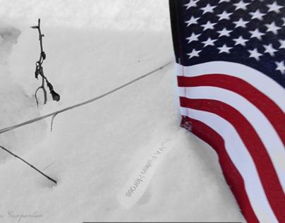 Hiking for Virginias Fallen Heros- 1/26/14