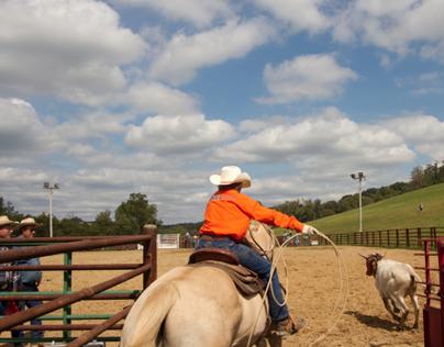 Photography—Rural Pennsylvania—Flicker Top 10