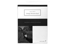 Strategic Allocation Brochure