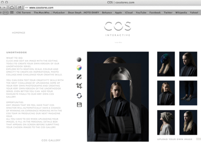 COS Interactive website concept