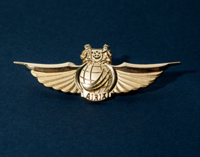 Air Vocation Badge