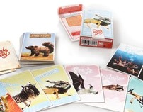 PredaPrey Matching cards