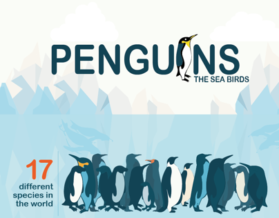 Infographic | Penguins