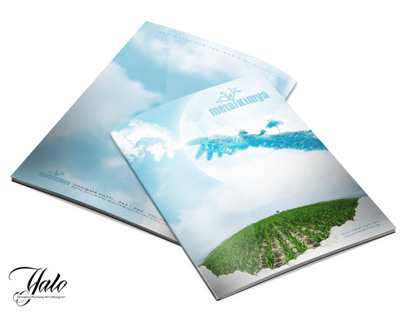 catalog and brochure design