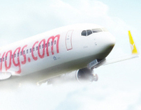 Pegasus Airlines  - Airplane Photo Illustration