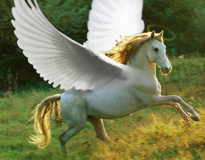Divine Horse- Photomanipulation