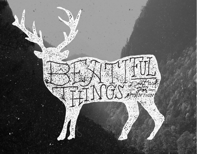 beatiful things