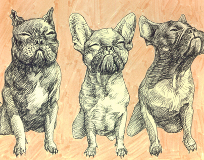 detailed drawing, nice dogs, cats and some things