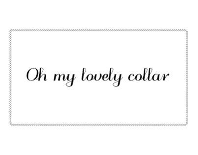 Oh my lovely collar !