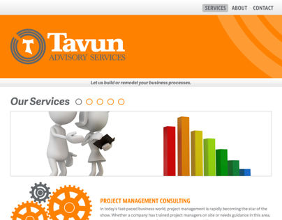 Tavun Advisory Services - Website Design
