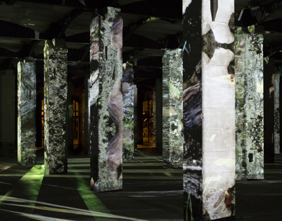 Symbiose / videoprojection on columns