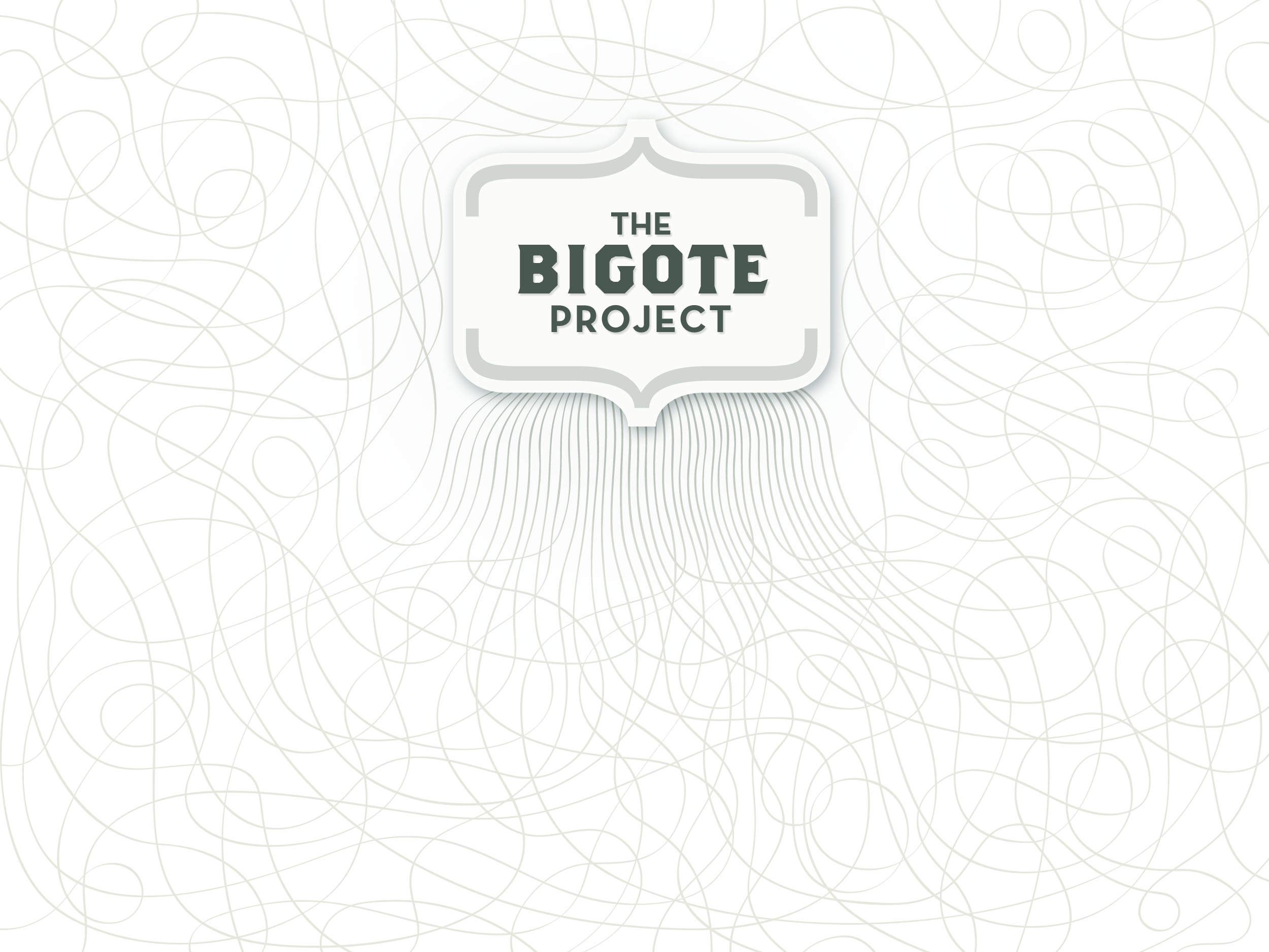 The Bigote Proyect