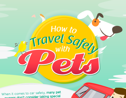 How to safely drive with pets
