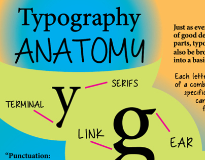 Typography Anatomy