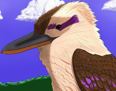 Animal Kingdom Illustrations