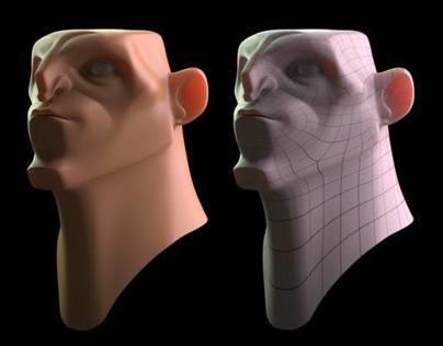 3D // Studies