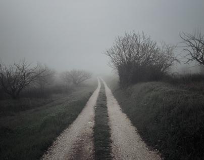 France Fog