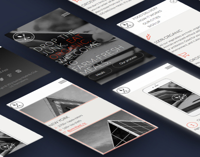 Website/UI/UX Design