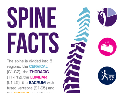 Spine Facts!