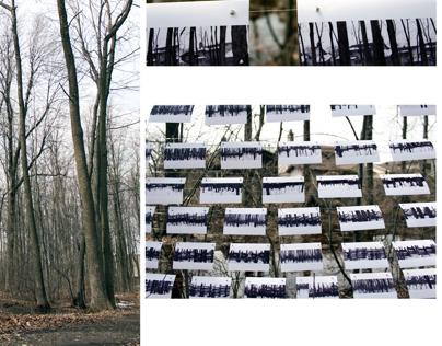 land art installation AVM1200