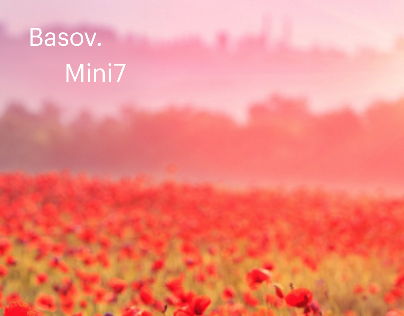 Mini7