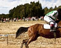 horse racing / Esmoriz 2011