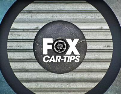Fox Car Tips - Land Rover