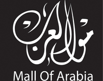 Mall Of Arabia Campaign  My Graduation Project