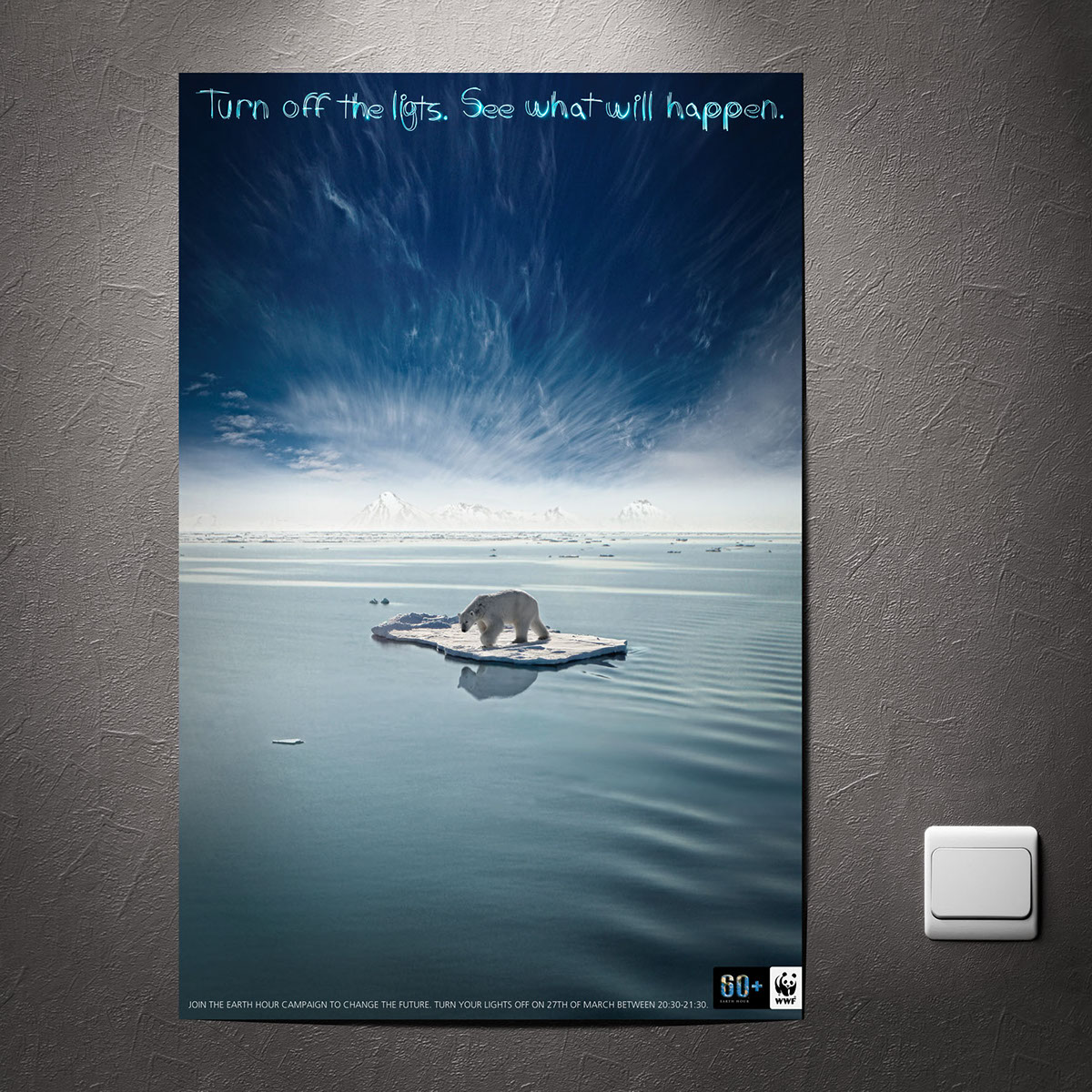 WWF Earth Hour Poster