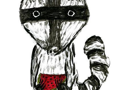diary of observations for raccoon \ дневник наблюдений