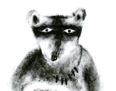 diary of observations for raccoon \ дневник наблюдений