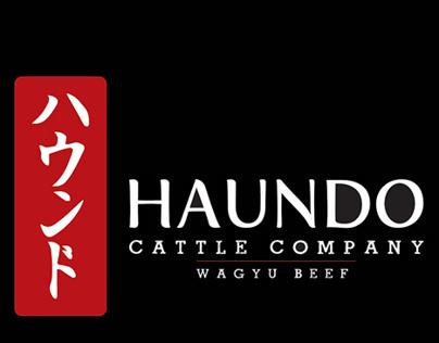 Haundo Cattle Company Logo