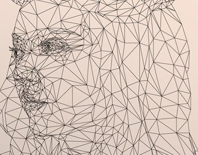ILLUSTRATION | Game of Polygons