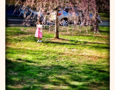 Branch Brook Park, NJ