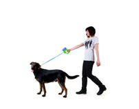 A redesign of Dog leash gun