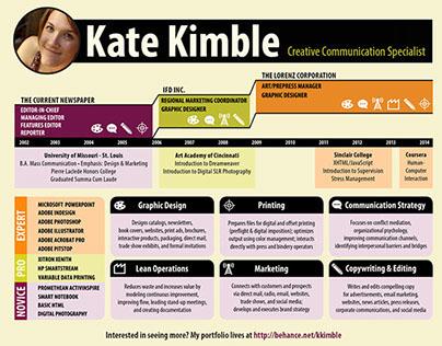 Infographic Resume / Microsite
