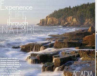 Acadia National Park Campaign