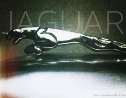 Metal Jaguar
