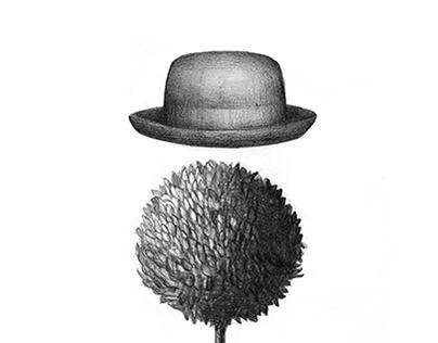 Surrealistic illustrations