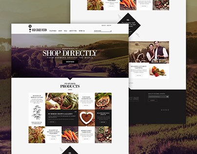 THG: Website Design